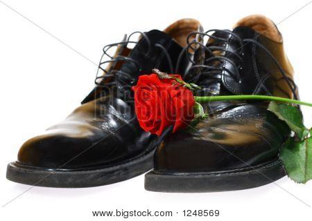 Rose und Schuhe