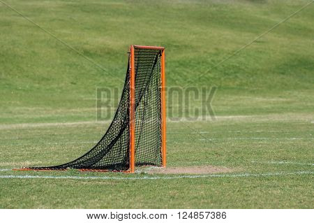 Single lacrosse goal with green grass background