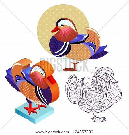 Birds Mandarin duck. Flat icon template for adult coloring isometric view. Set of vector birds in different unusual style. Illustration collection of images birds isolated on white background.