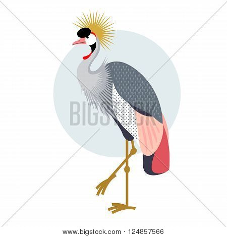 Bird Crowned Crane. Decorative vector bird - flat icon. Illustration bird isolated image on a white background.