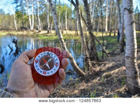 With compass in a spring forest. Magnetic compass in the hand on the background of nature in spring.