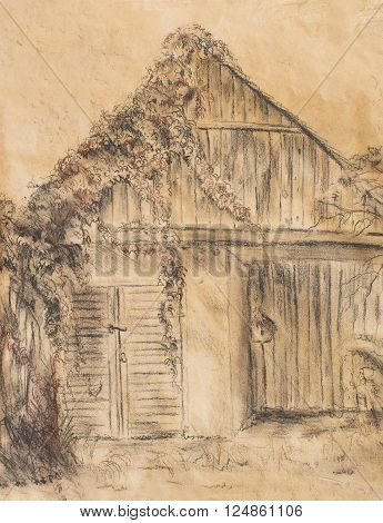 Cottage hand drawing and wild grapevine. Draving on old paper