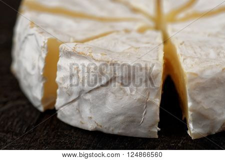 Head of brie cheese cut in pieces, close-up