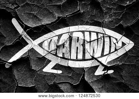 darwin fish symbol with some soft smooth lines