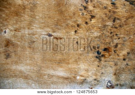 The Brown Wood Texture With Natural Patterns ** Note: Visible grain at 100%, best at smaller sizes