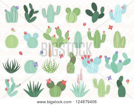 Vector Set of Cactus and Succulent Plants