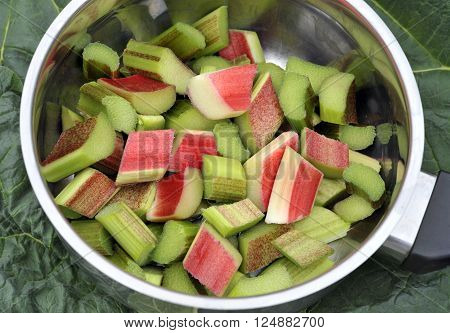 Rhubarb chopped ready to cook in a saucepan. Rhubarb is a herbaceous perennial vegetable which is often treated as a fruit in culinary use.