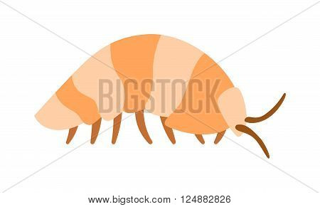 Wood louse bug and wood louse invertebrate. Small woodlouse creature armored arthropod pest woodlouse animal beetle exoskeleton. Beetle wood louse exoskeleton armadillo armor insect flat vector.