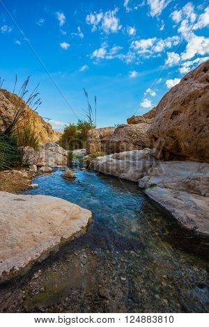 Typical landscape of the Middle East. The stream of cold pure water flows through the beautiful gorge Ein Gedi, Israel