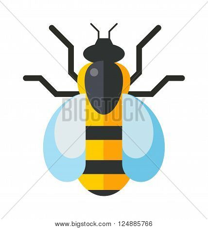 Cartoon bee and sweet yellow bee. Summer worker bug, honey bee antenna. Worker bumblebee sting busy bee insect. European western honey yellow bee nature wing fly insect sweet worker flat vector.