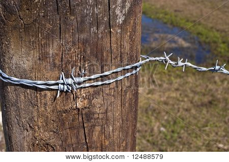 Barb Wire On Post
