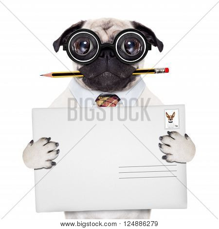Mail Delivery Post Dog