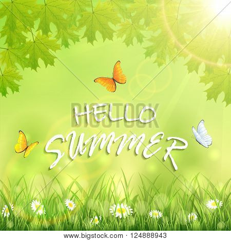 Nature background with flowers in the grass, maple leaves, shinning Sun, flying butterflies and inscription Hello Summer, illustration.