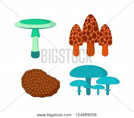 Mushrooms vector illustration set. Different types of mushrooms isolated on white background. Nature mushrooms for cook food and poisonous mushrooms flat style