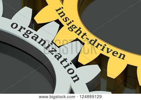 insight-driven organization concept on the gearwheels 3D rendering