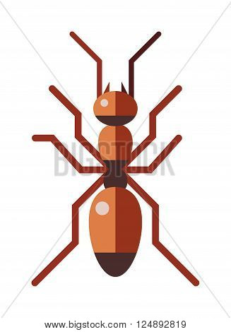 Ant small insect and cute ant worker. Brown ant animal character, cartoon rufa wildlife ant little worker. Red ant forest rufa small antenna insect, nature cartoon graphic brown worker flat vector.