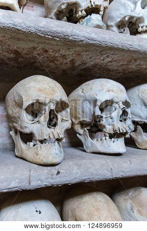 Human skulls found  inside a Christian catacomb.