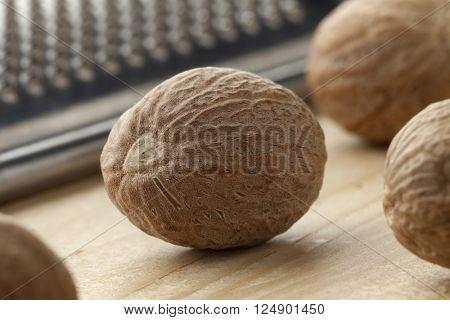 Single nutmeg kernel close up