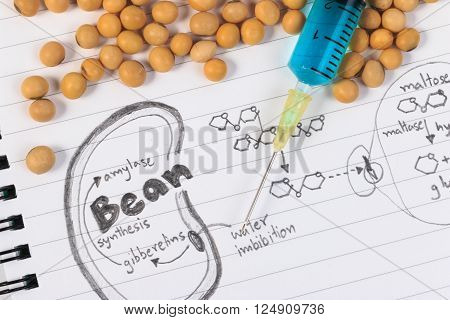 Soybean, chemical formula, syringe and blue chemistry with reaction formula.
