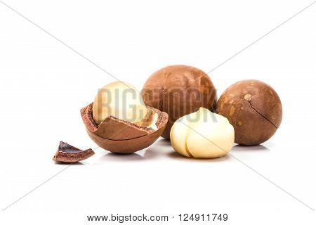 The macadamia nuts and shell on white background