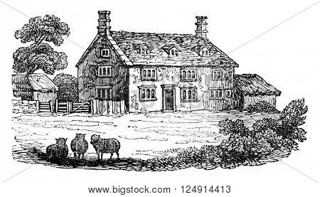 Home and Newton died in 1727, vintage engraved illustration. Colorful History of England, 1837.