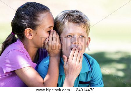 Girl whispering in her brothers ear in park