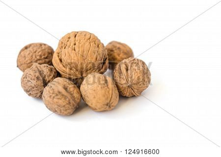 Small walnuts in circle and in the middle a large walnut. Isolated on white background.