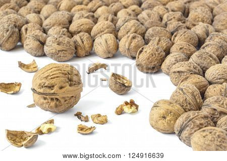 Walnuts background and a whole walnut in it with cracked walnut and nutmeat.