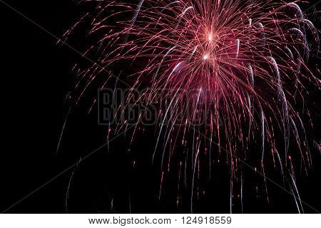 Fireworks background. Colorful fireworks in the night sky.
