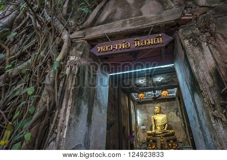 Wat Bang Kung, The Banyan Tree Temple, Amphawa, Thailand