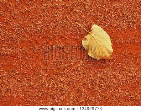 Dry leaf an tennis court. Dry light red crushed bricks surface. Soft effect.