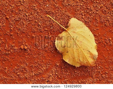 Dry Leaf An Tennis Court. Dry Light Red Crushed Bricks Surface