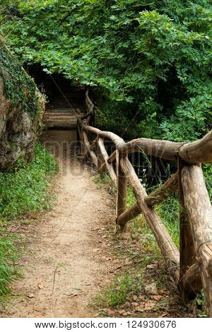 Pathway through dense forest and wooden fence in Crete
