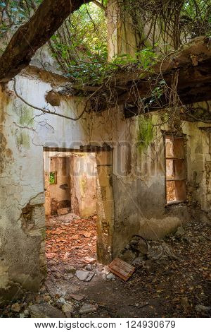 Remains of abandoned house damaged by nature