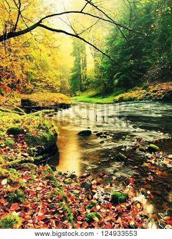 View into autumn mountain river with blurred waves,, fresh green mossy stones and boulders on river bank