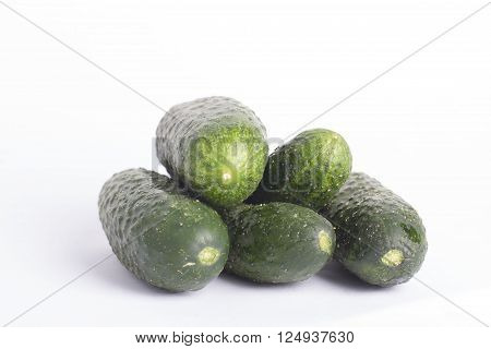 Fresh green cucumber gherkin isolated on a white