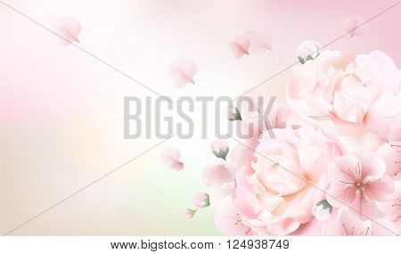 Blurred pastel background with rose flower petals.