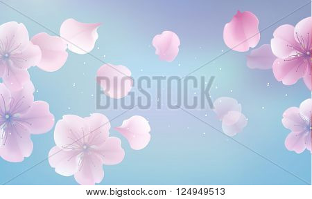 elegant soft pink color cherry flowers with sakura petals background. Abstract blured floral panoramic background blue soft spring space. Modern style vector soft spring illustration background
