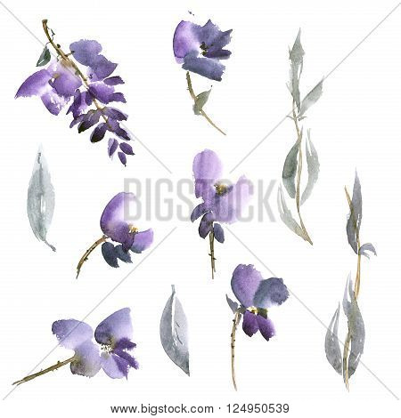 Watercolor and ink illustration of violet flowers in style sumi-e u-sin gohua. Oriental traditional painting.