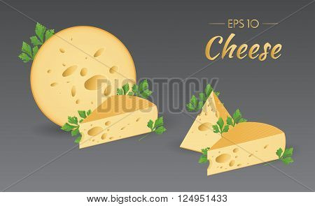 Vector illustration. Cheese with parsley. Milk product. Set of different pieces of cheese. Food collection