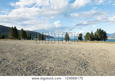 ground near lake in summer day in new zealand