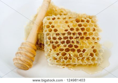sweet honeycomb and wooden drizzler isolated on white
