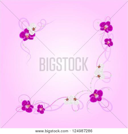 Arrangement of orchid flowers on pink background for greeting card or invitation design.
