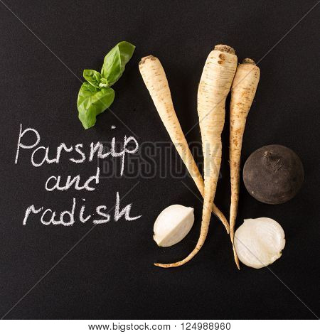 parsnip and black radish isolated on a black background