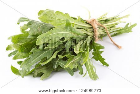 rucola isolated on white