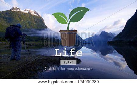 Life Balance Green Conservation Concept
