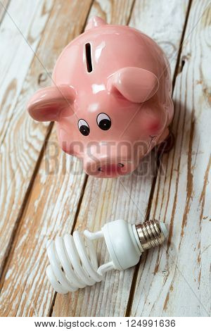 Piggy Bank and Energy Saving Bulb on Wooden Background