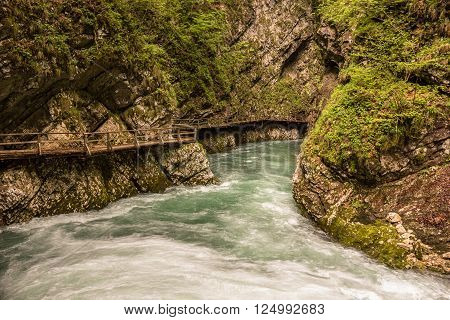 View on flowing mountain river and wooden bridge in Vintgar Gorge in Slovenia