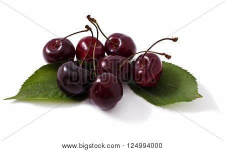 Juicy cherries isolated on a white background