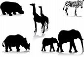 stock photo of animal silhouette  - illustration of five different african animal silhouettes - JPG